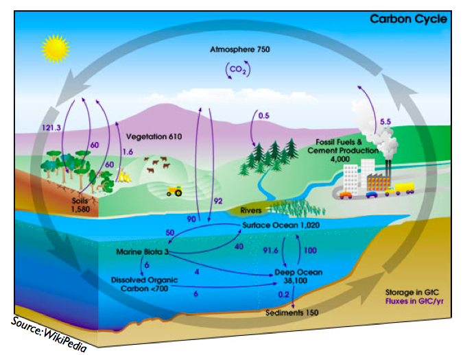 Gallery For > Biosphere 2 Diagram